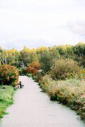 Участки в садовом товариществе рядом с Жодино и М1